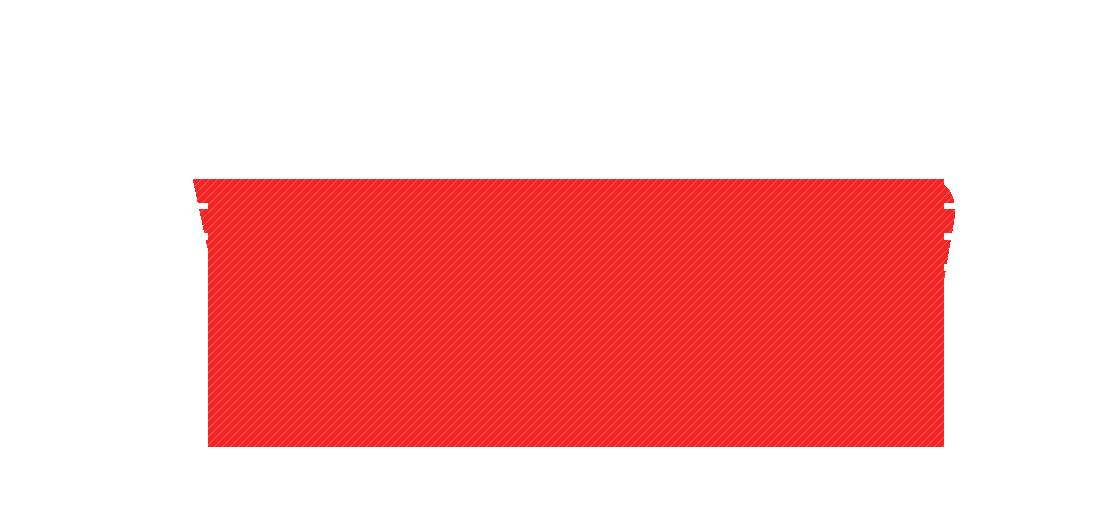 virtualgp_logo_next_tm_white